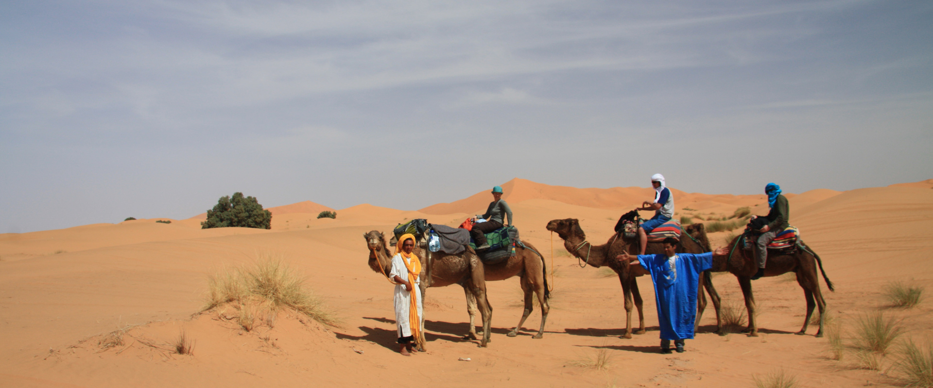Camel Trek, the perfect way to explore the desert